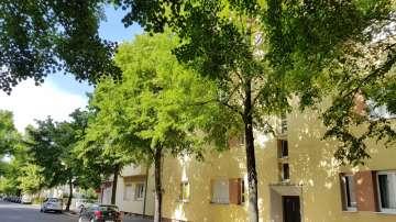 13189 Berlin, Etagenwohnung zum Kauf, Prenzlauer Berg